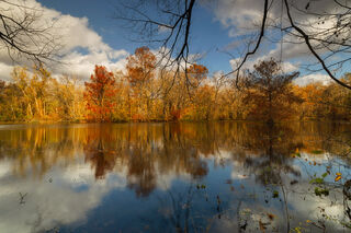 Autumn's Aura