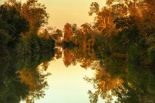 Colors Of Louisiana