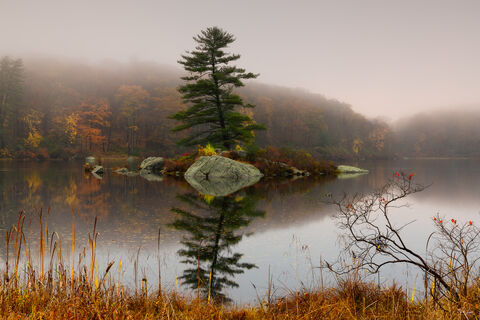 Fall forest scenery at Harriman State Park in New York.