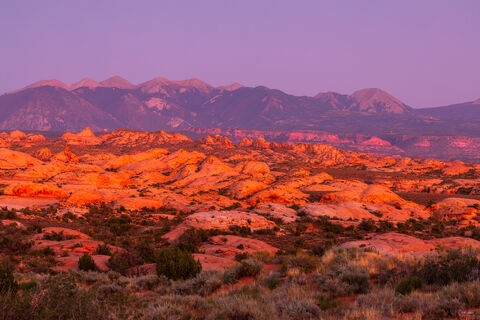 View of the Petrified Dunes in Arches National Park in Utah at sunset.