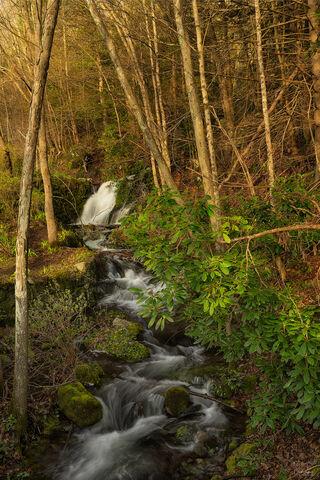 View of falls in Delaware Water Gap in New Jersey.