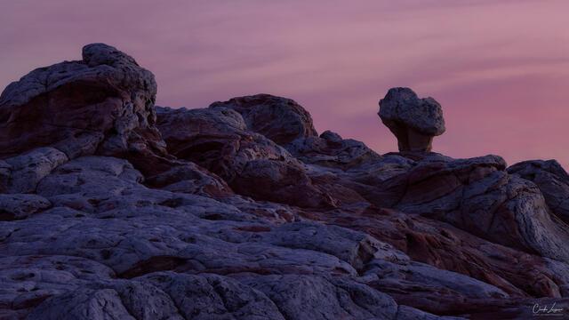Alien Landscape print