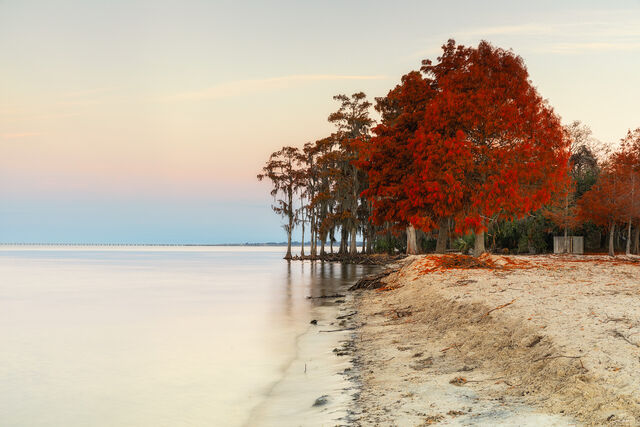 Beaches Of Louisiana print