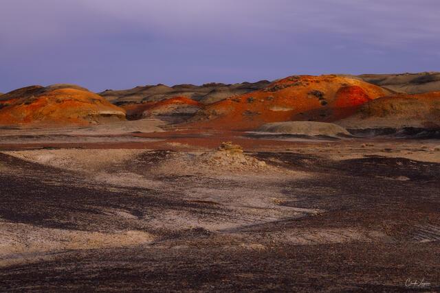On Martian land print