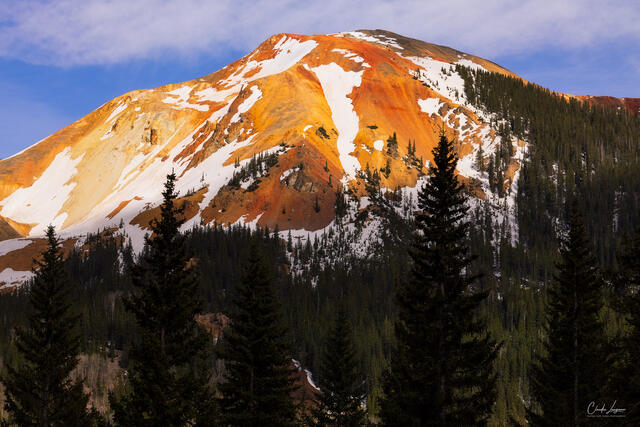 Snow Trails print