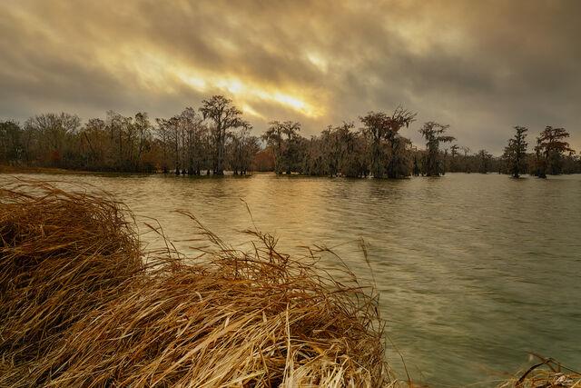 Swamp Lake print