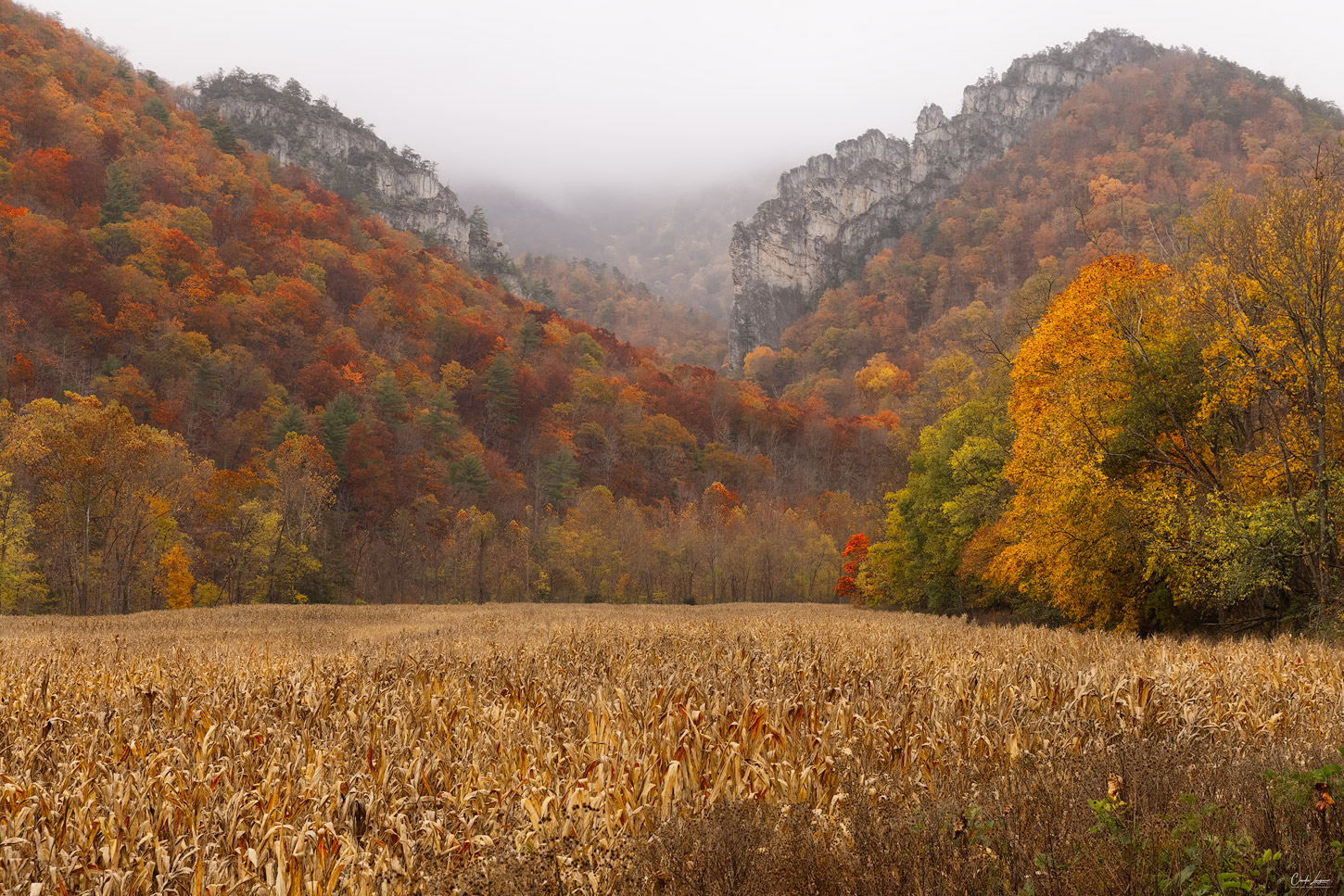 View of colorful fall scenery in West Virginia.
