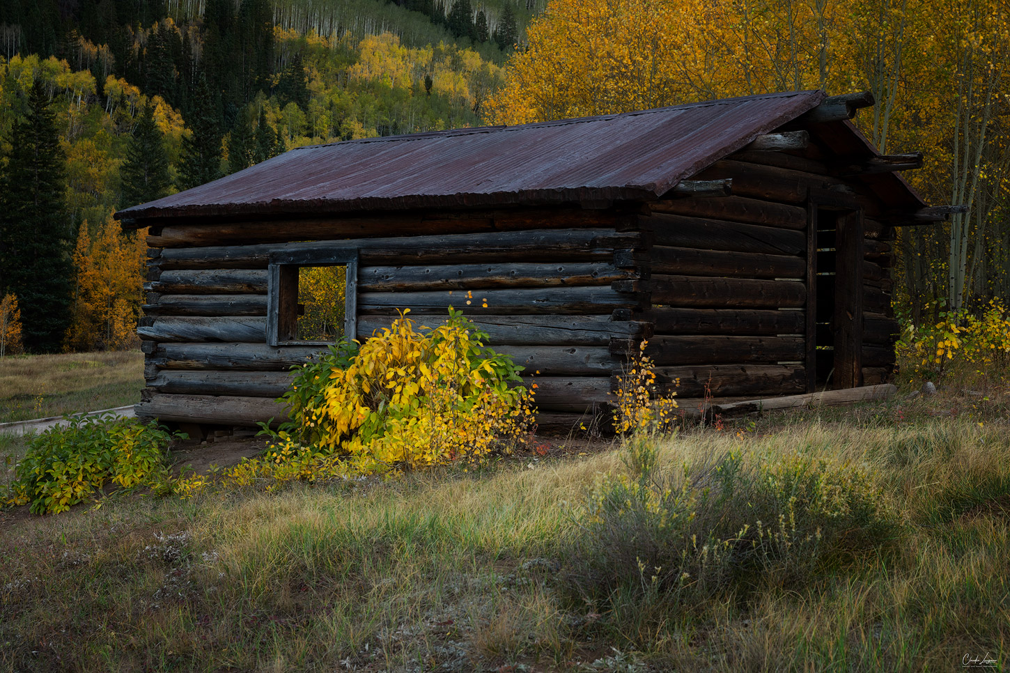 View of abandoned building in the town of Ashcroft in Colorado.