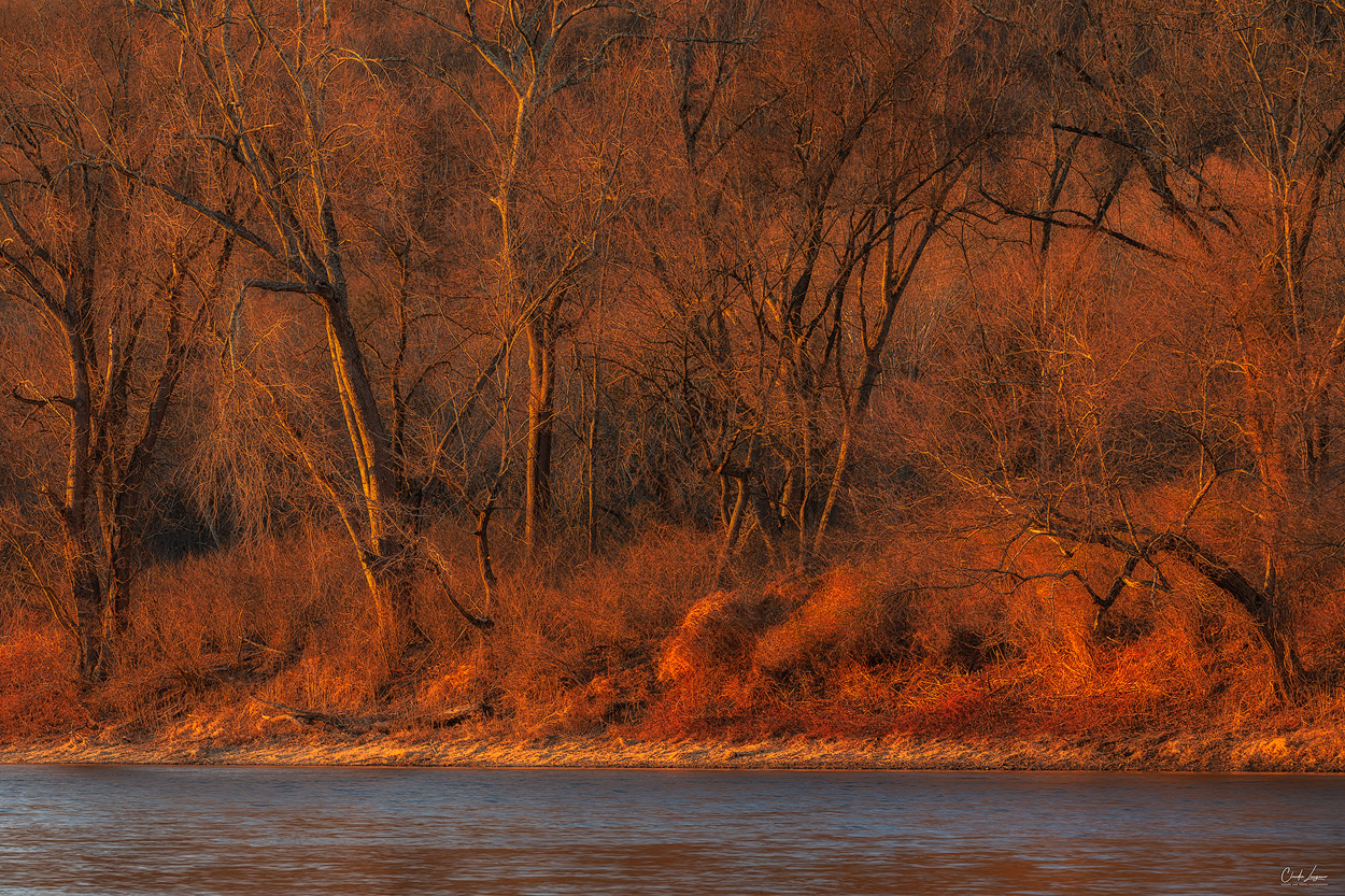 Forest scenery at Delaware Water Gap in New Jersey at sunset.